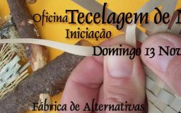 13NOV2016 - Workshop de tecelagem vegetal
