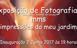 JUN2017 - Fotografias de Margarida Macedo de Sousa