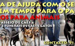 7ABR20\6 - Serviços para Animais