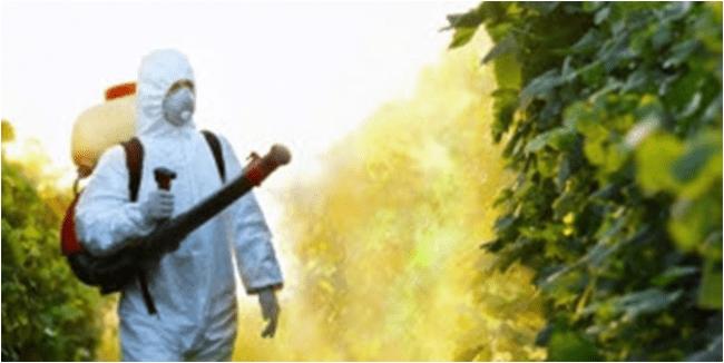 O novo veneno mortal da Monsanto